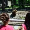 zoo urs